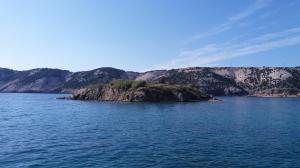 A sziget (14)