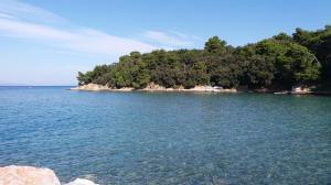 A sziget (18)